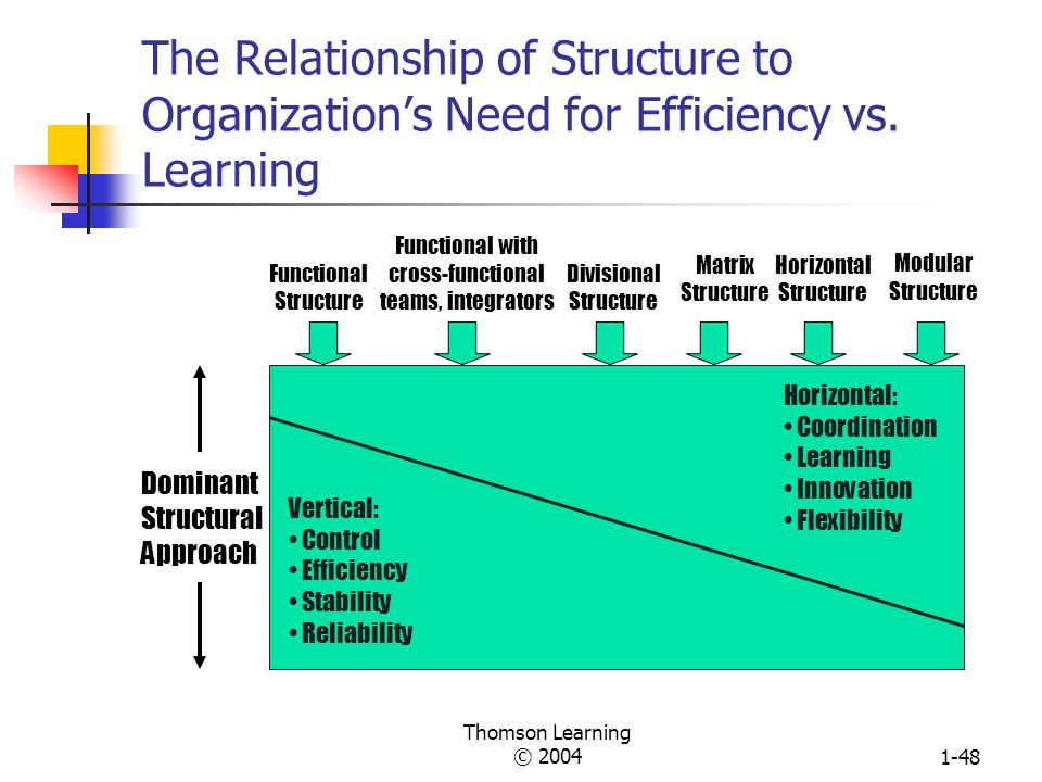 The Relationship of Structure to Organization's Need for Efficiency vs