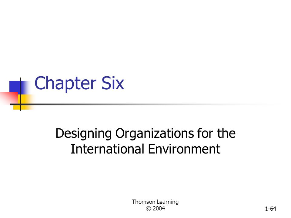 Designing Organizations for the International Environment