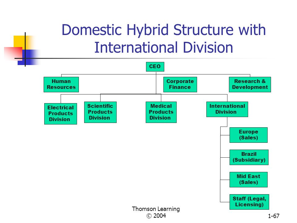 Domestic Hybrid Structure with International Division
