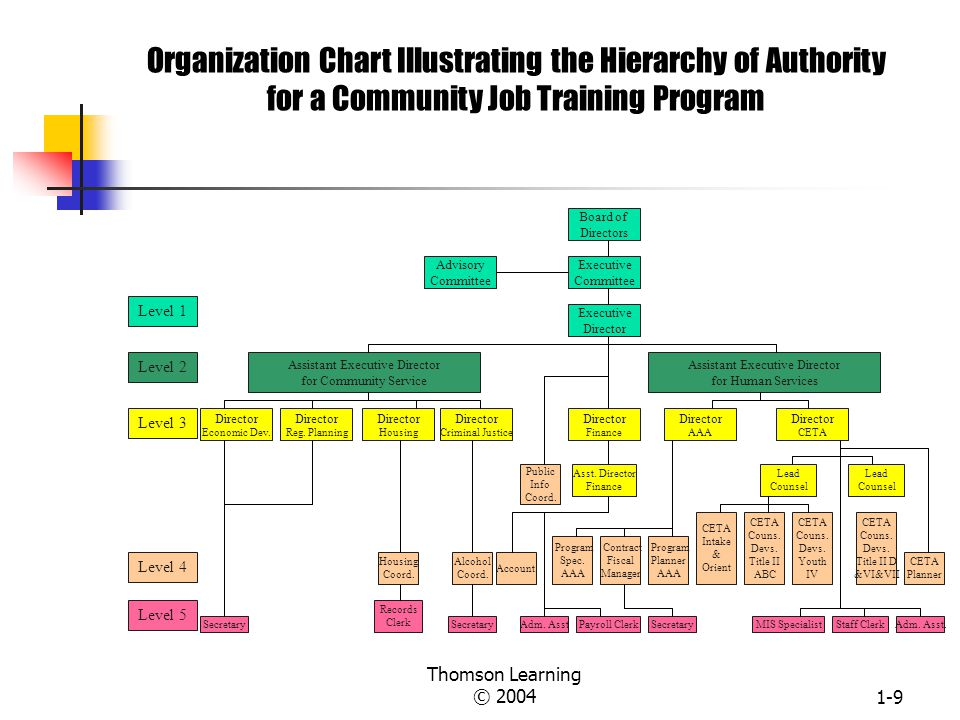 Organization Chart Illustrating the Hierarchy of Authority