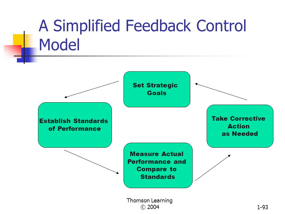 A Simplified Feedback Control Model