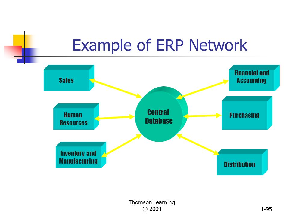 Example of ERP Network Central Database Sales Financial and Accounting