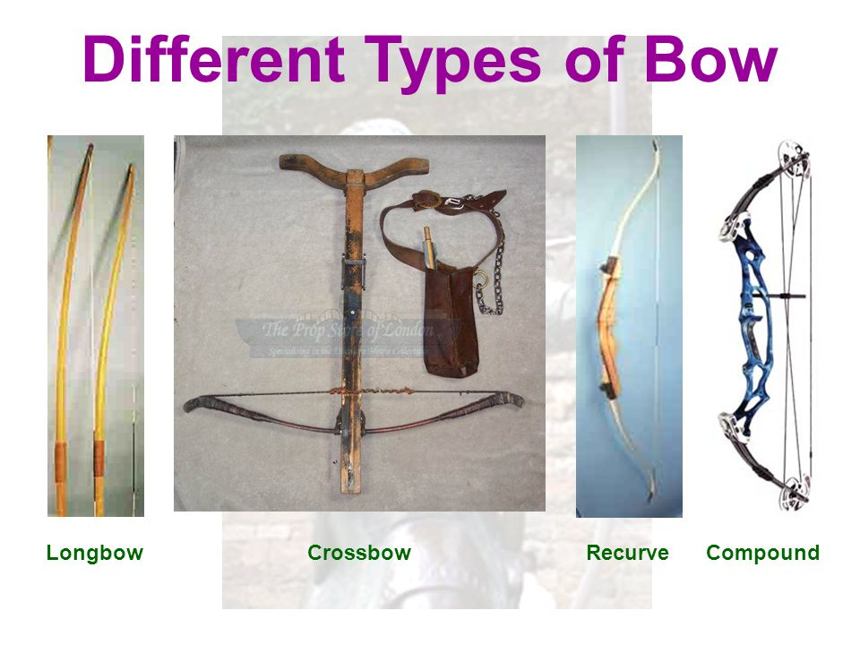 Different Types of Bow Longbow Crossbow Recurve Compound