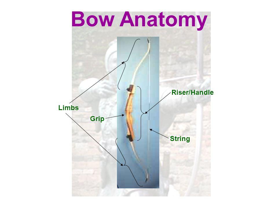 Bow Anatomy Riser/Handle Limbs Grip String