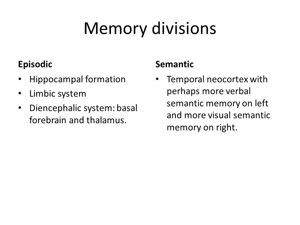 Memory divisions Episodic Semantic Hippocampal formation Limbic system