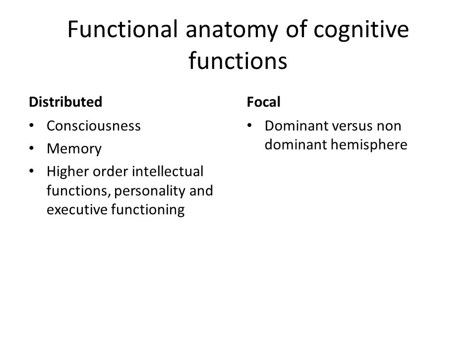 Functional anatomy of cognitive functions