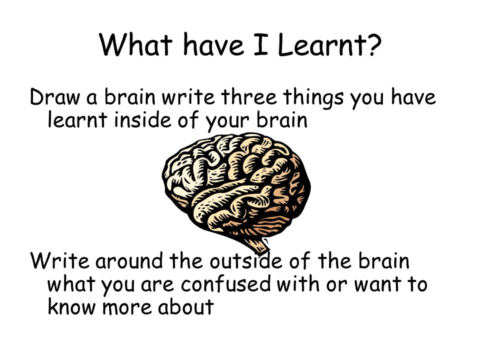 What have I Learnt Draw a brain write three things you have learnt inside of your brain.