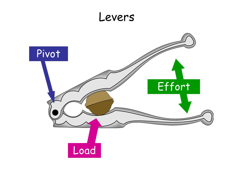Levers Pivot Effort Load