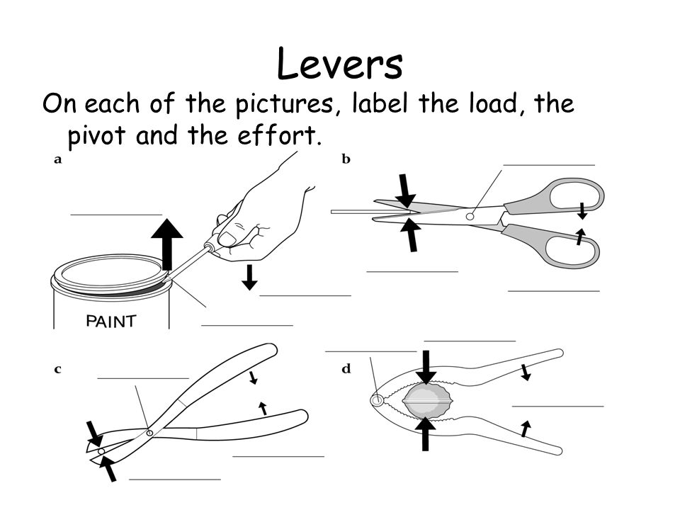 Levers On each of the pictures, label the load, the pivot and the effort.