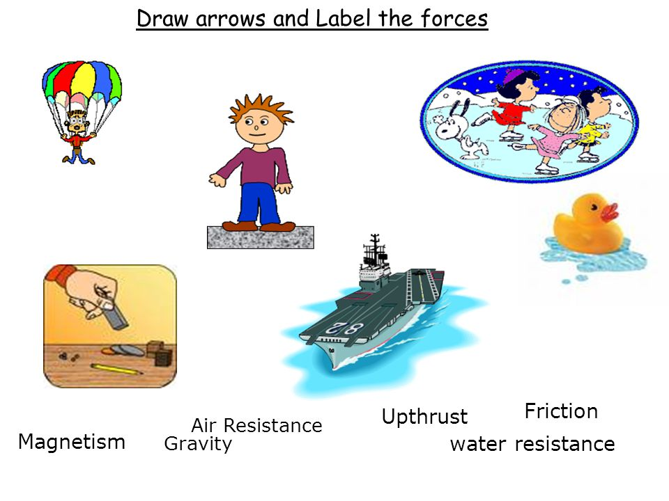 Draw arrows and Label the forces