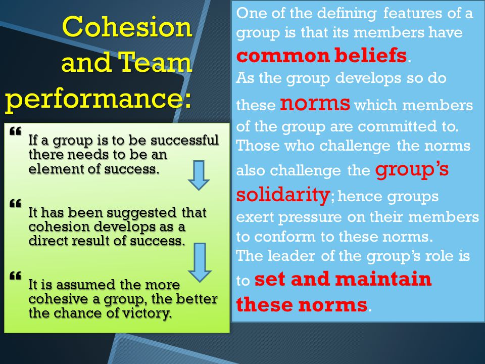 Cohesion and Team performance: