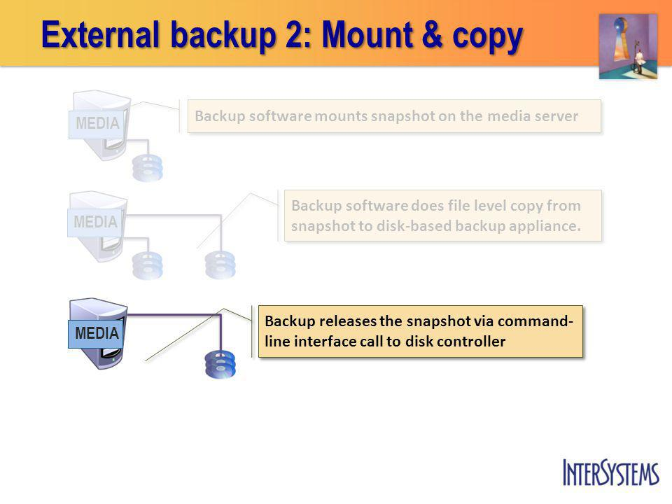 External backup 2: Mount & copy