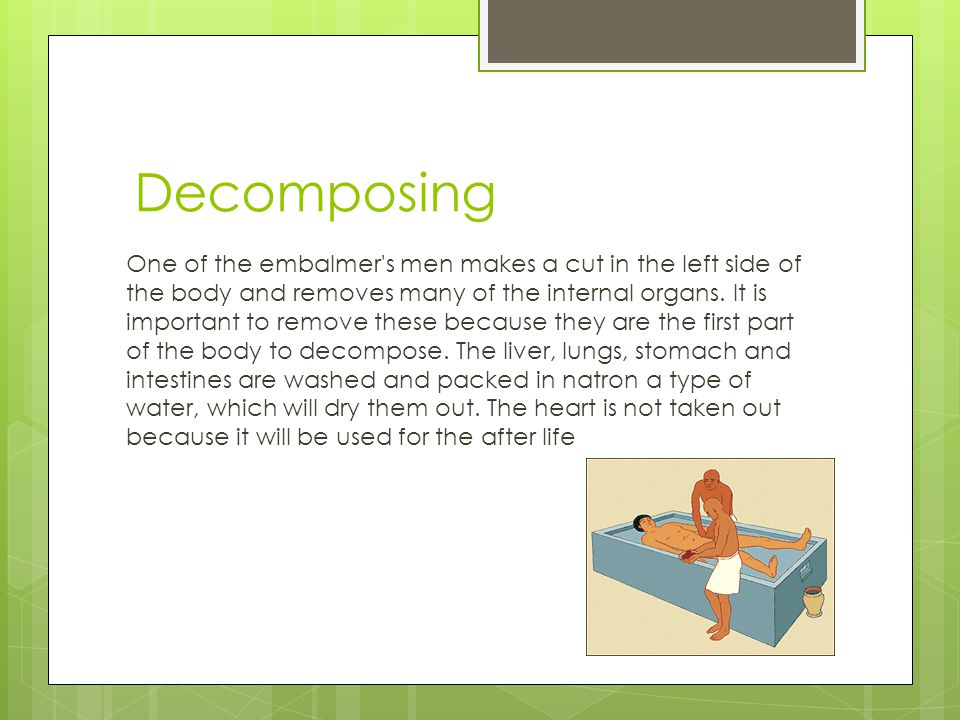 Decomposing