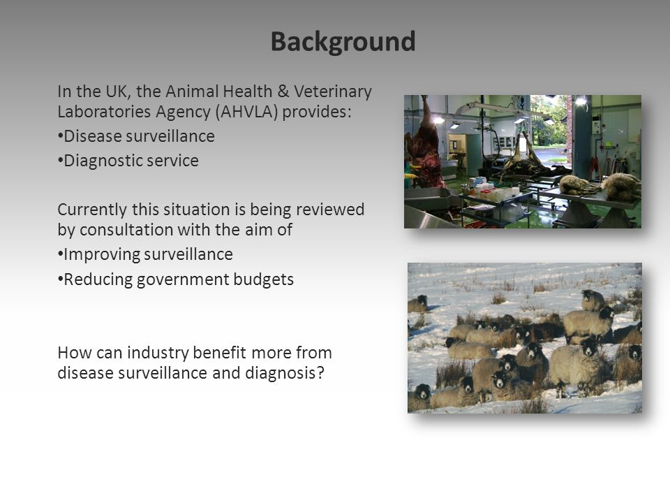 Background In the UK, the Animal Health & Veterinary Laboratories Agency (AHVLA) provides: Disease surveillance.