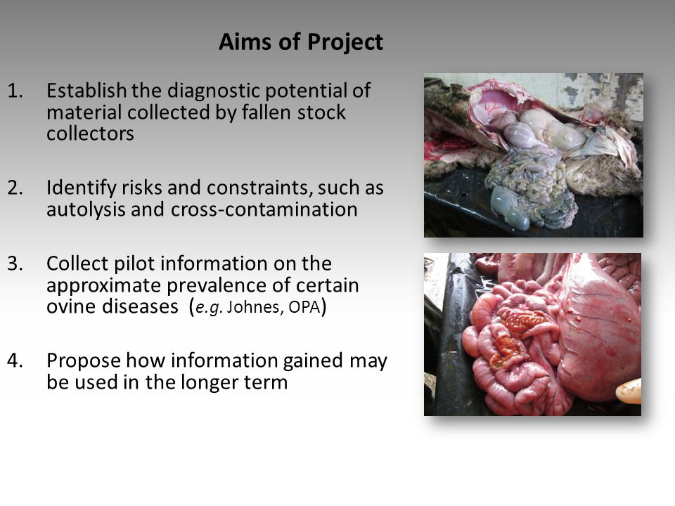 Aims of Project Establish the diagnostic potential of material collected by fallen stock collectors.