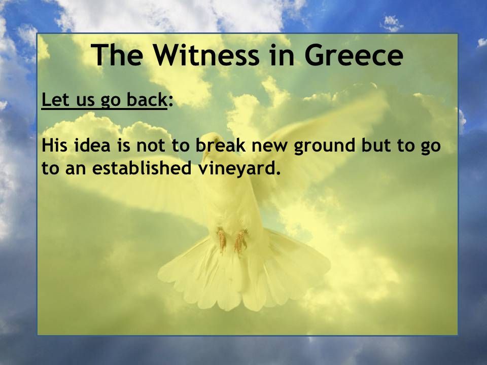 The Witness in Greece Let us go back: His idea is not to break new ground but to go to an established vineyard.