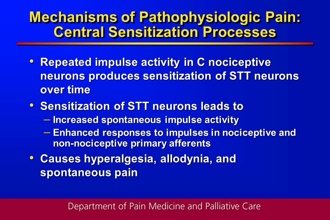 Mechanisms of Pathophysiologic Pain: Central Sensitization Processes