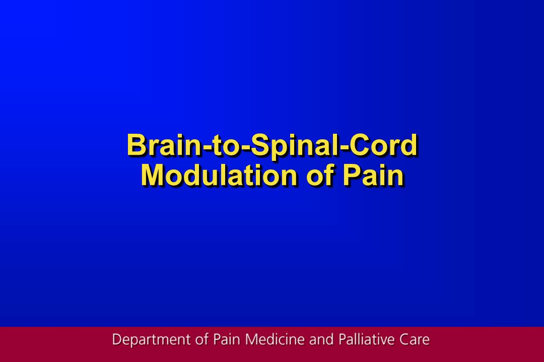 Brain-to-Spinal-Cord Modulation of Pain
