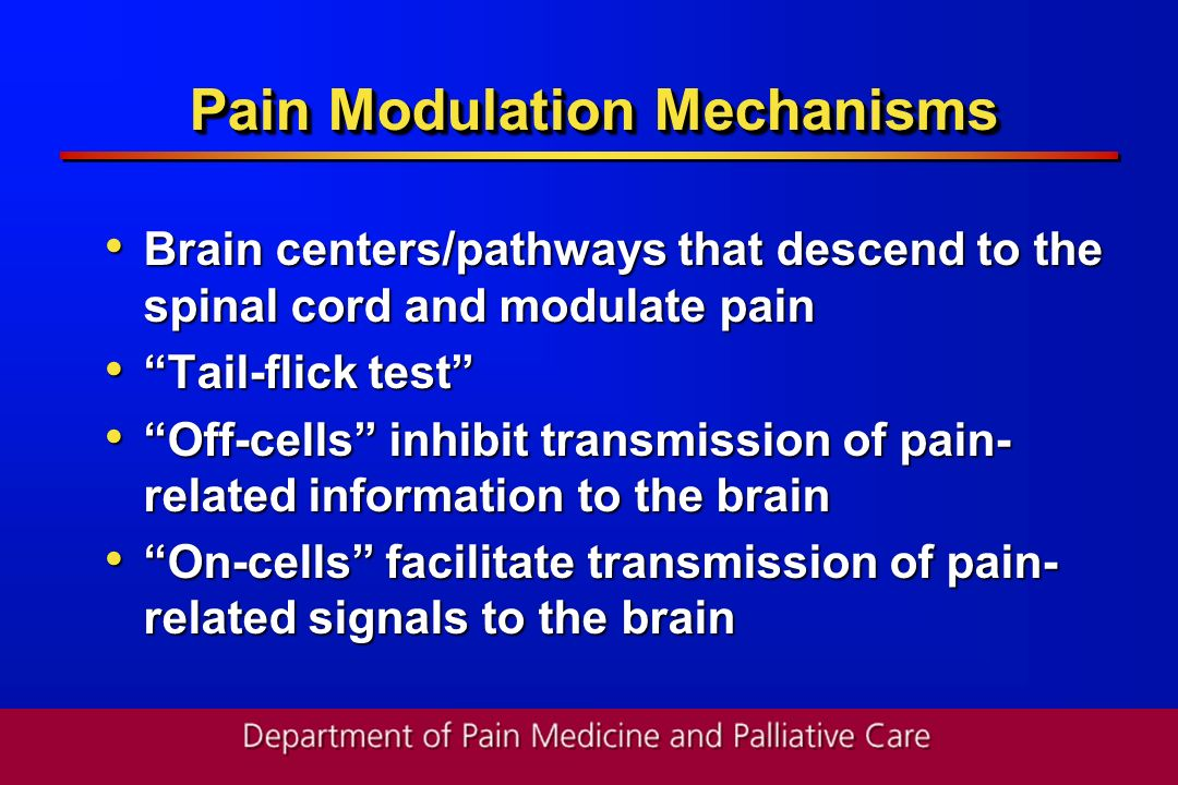 Pain Modulation Mechanisms