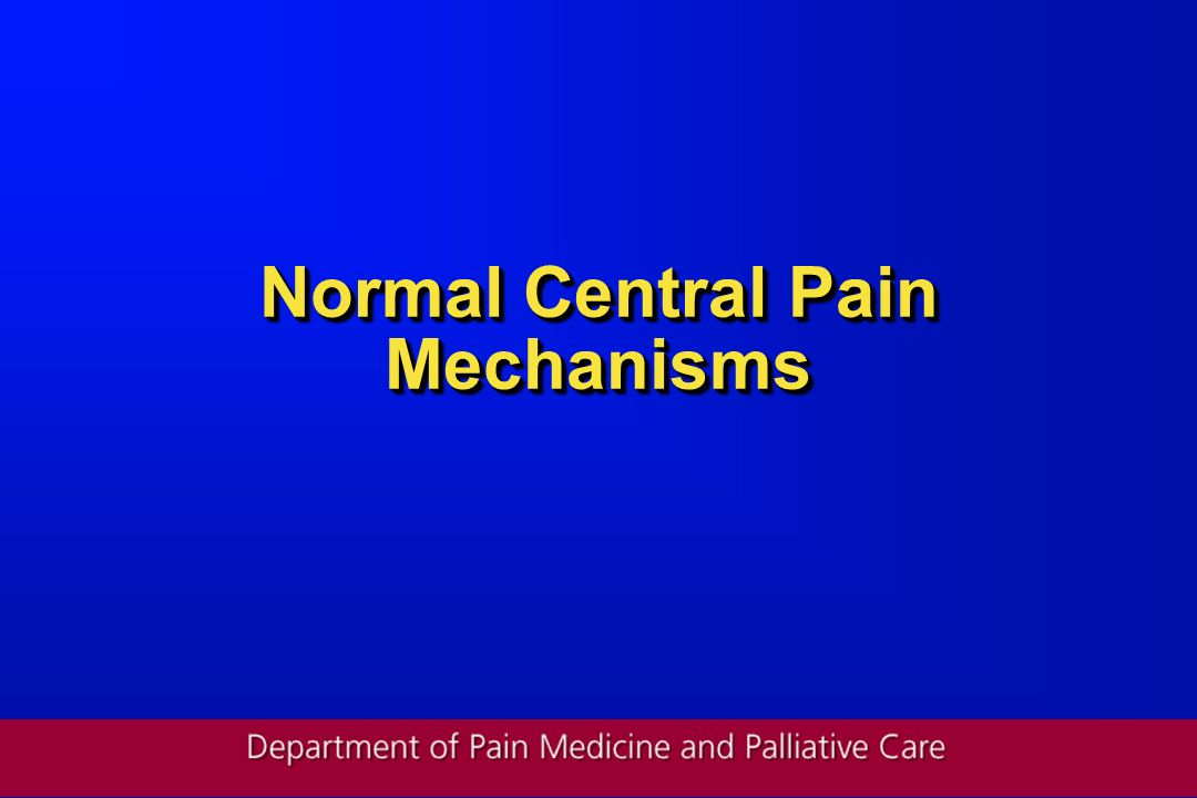 Normal Central Pain Mechanisms
