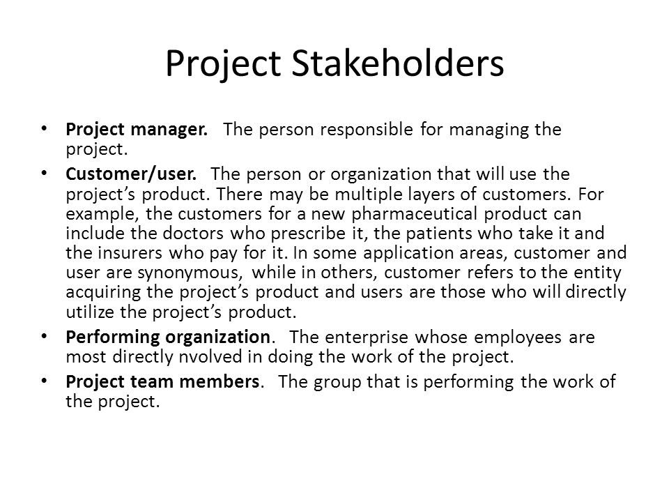 Project Stakeholders Project manager. The person responsible for managing the project.
