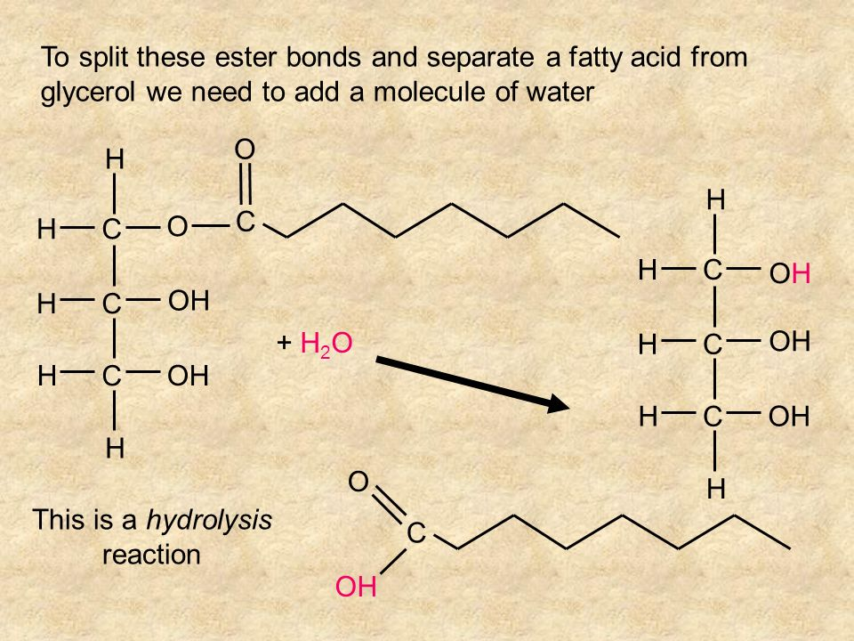 This is a hydrolysis reaction