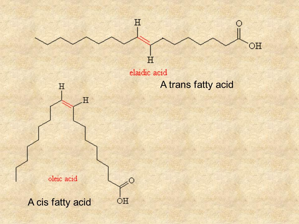 A trans fatty acid A cis fatty acid