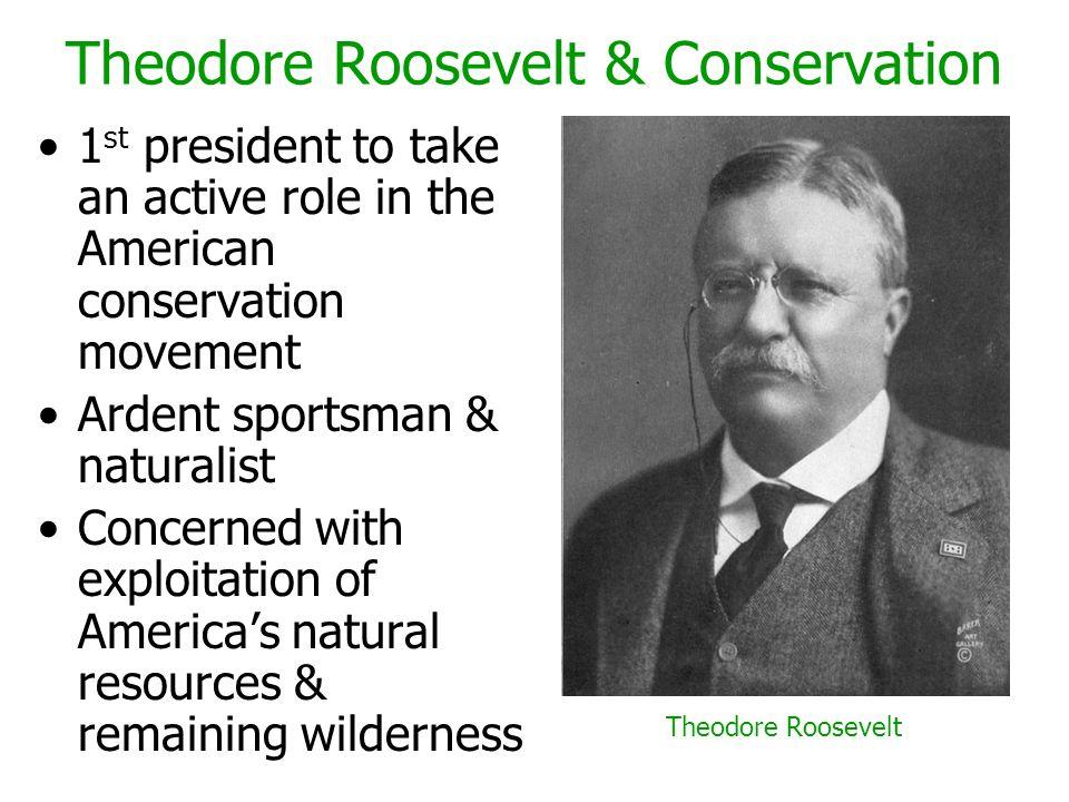 Theodore Roosevelt & Conservation
