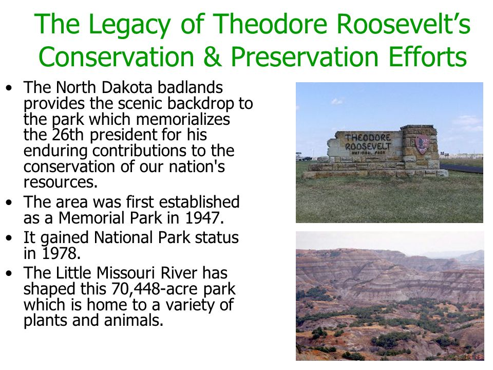 The Legacy of Theodore Roosevelt's Conservation & Preservation Efforts