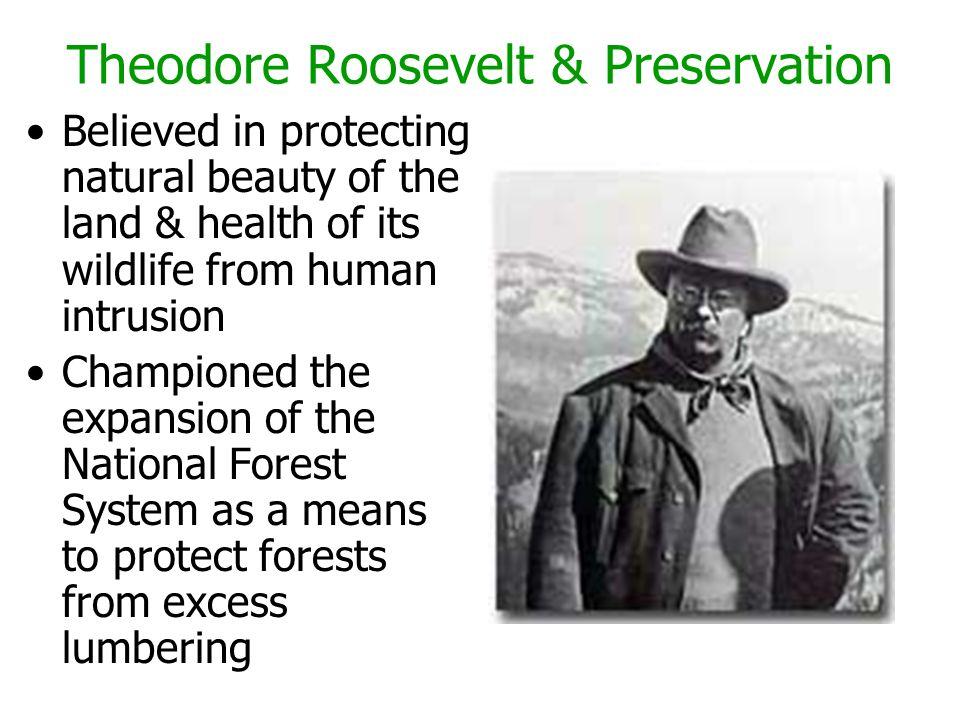 Theodore Roosevelt & Preservation