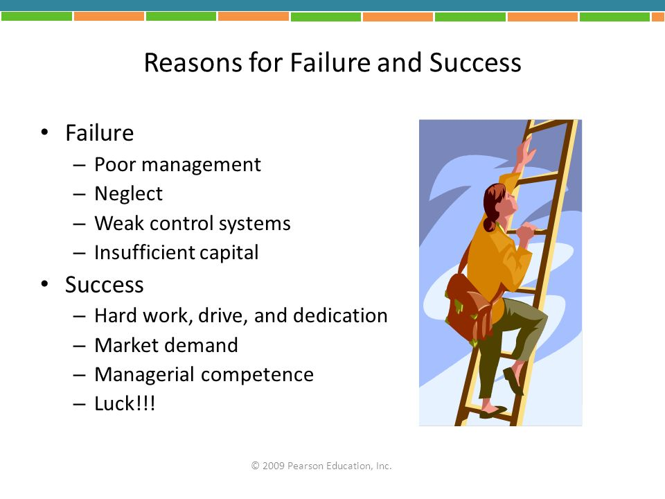 Reasons for Failure and Success