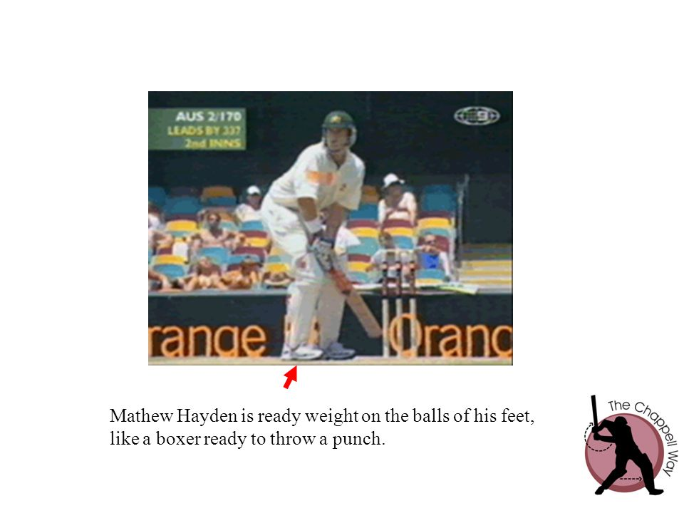 Mathew Hayden is ready weight on the balls of his feet,
