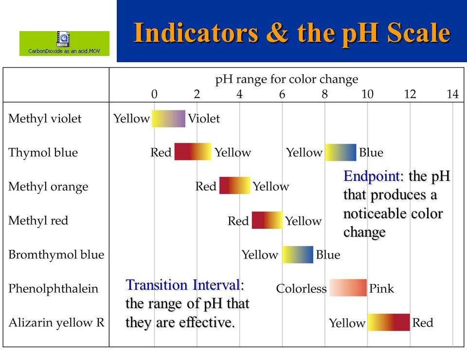 Indicators & the pH Scale