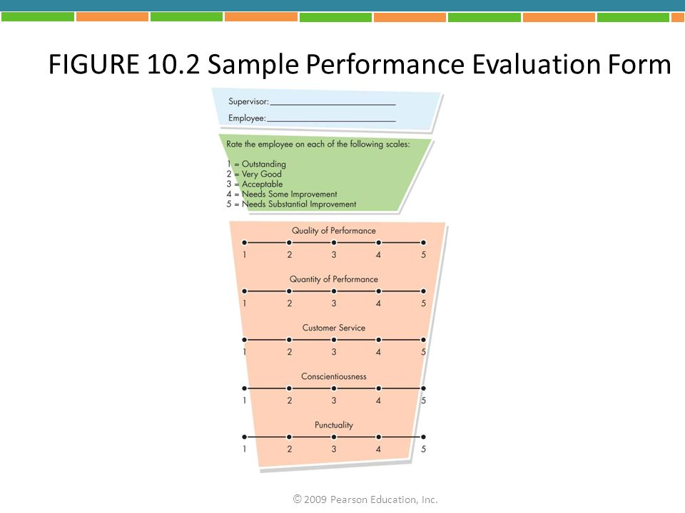 FIGURE 10.2 Sample Performance Evaluation Form