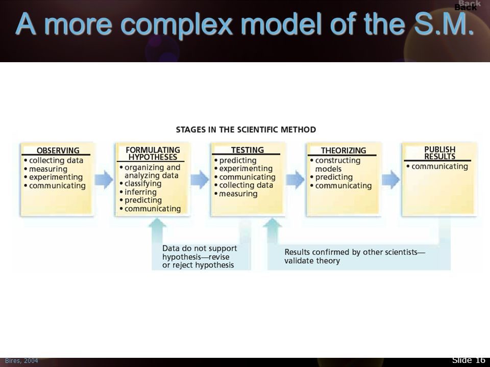 A more complex model of the S.M.