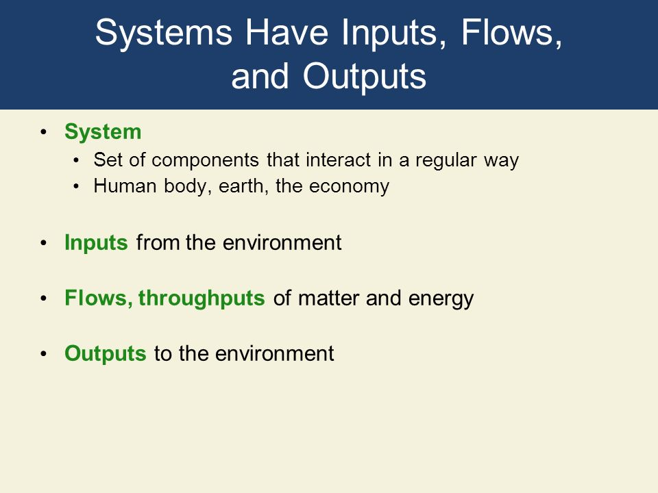 Systems Have Inputs, Flows, and Outputs