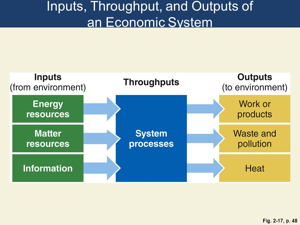 Inputs, Throughput, and Outputs of an Economic System