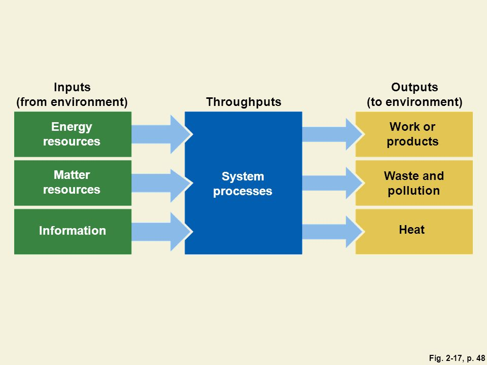 Inputs (from environment) Outputs (to environment) Throughputs