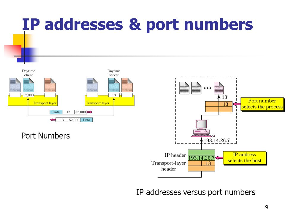 IP addresses & port numbers