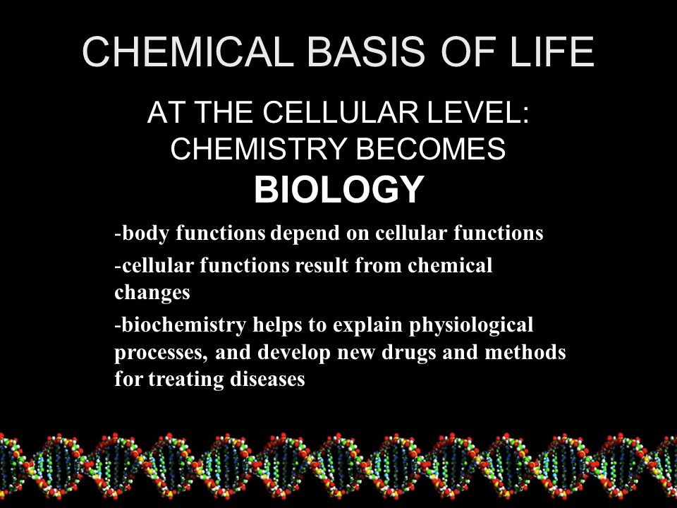 AT THE CELLULAR LEVEL: CHEMISTRY BECOMES BIOLOGY