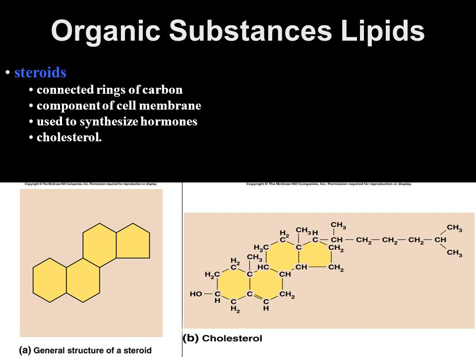 Organic Substances Lipids