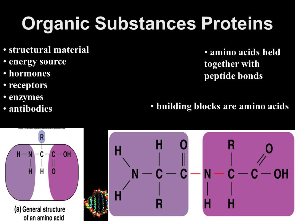 Organic Substances Proteins