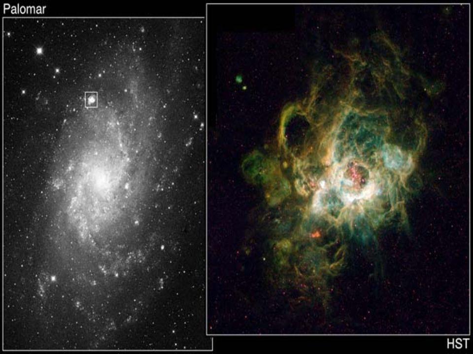 Star forming region of NCG604