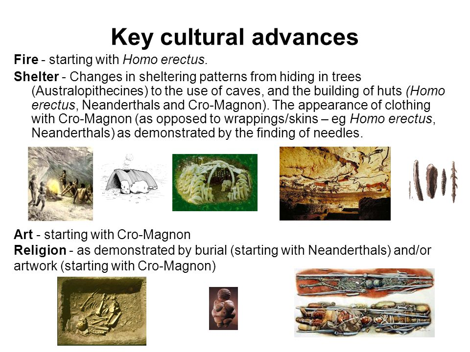 Key cultural advances Fire - starting with Homo erectus.