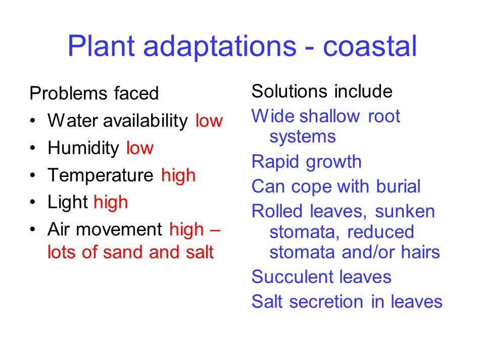 Plant adaptations - coastal