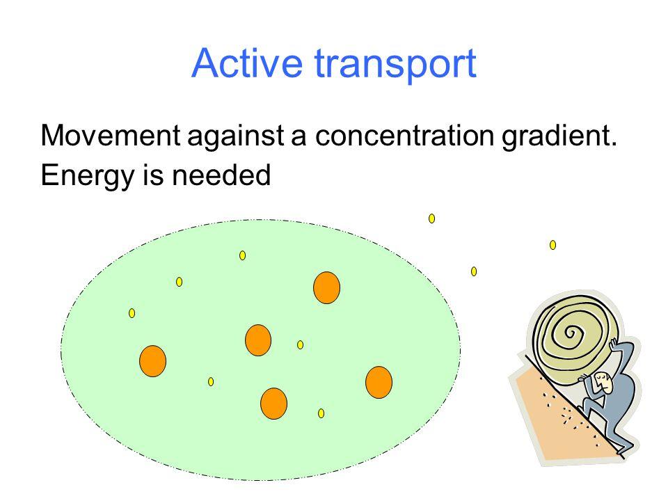 Active transport Movement against a concentration gradient.