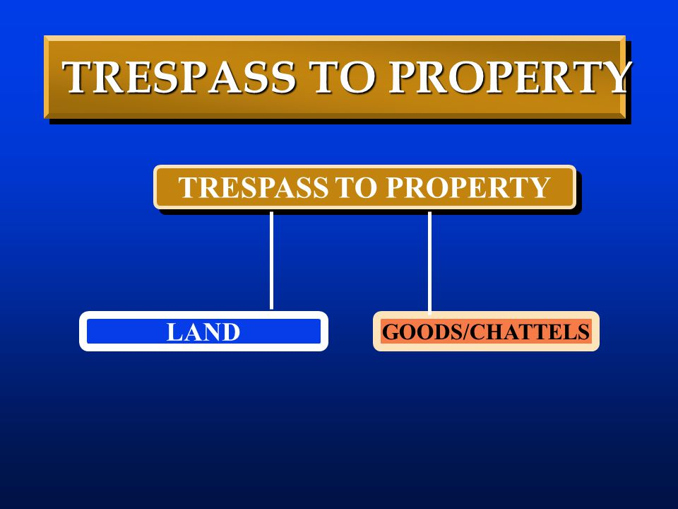 TRESPASS TO PROPERTY TRESPASS TO PROPERTY LAND GOODS/CHATTELS