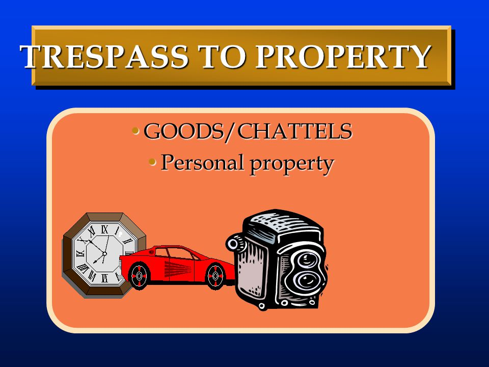 TRESPASS TO PROPERTY GOODS/CHATTELS TRESPASS TO PROPERTY