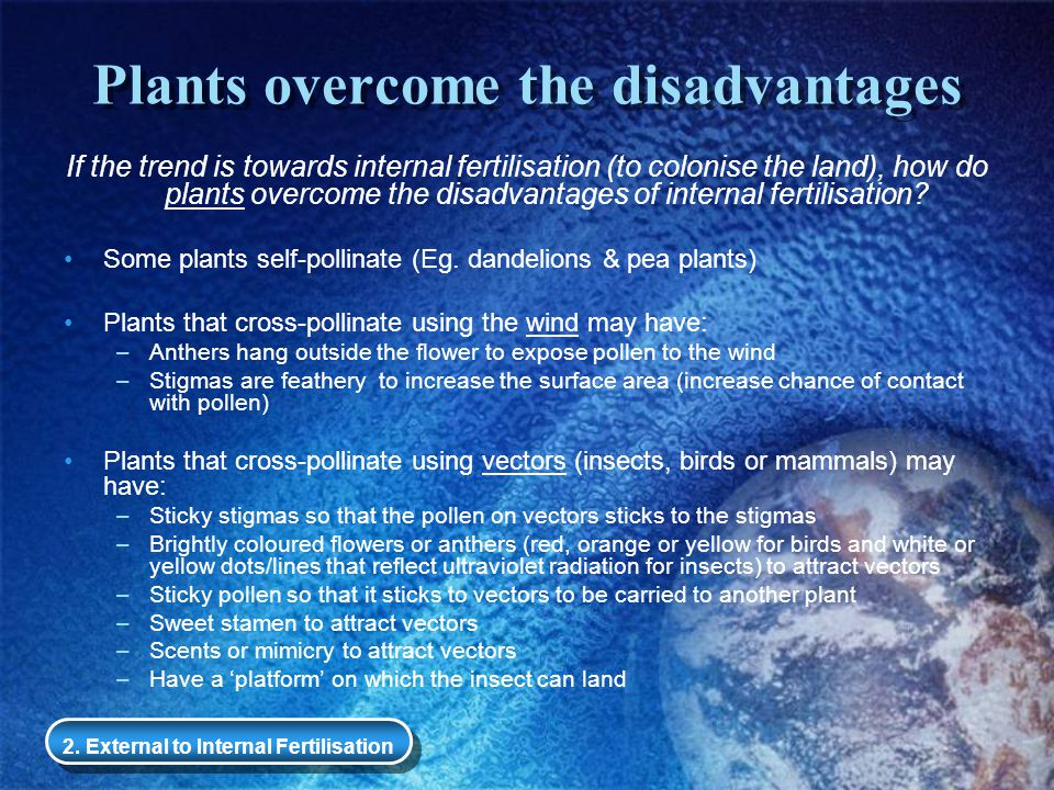 Plants overcome the disadvantages