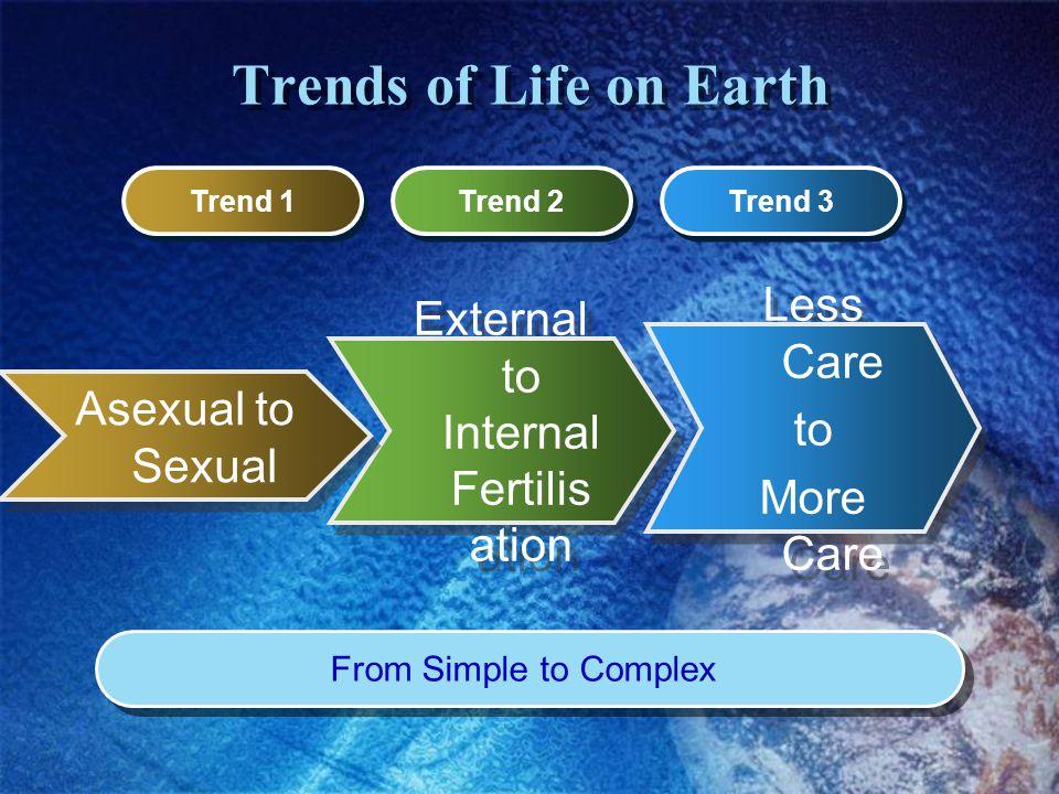 External to Internal Fertilisation